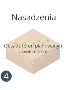 trawa-nasadzeniaj-2